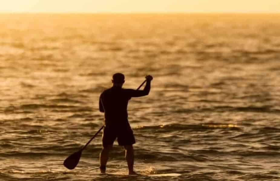Man Stand Up Paddleboarding in the Ocean at Dawn